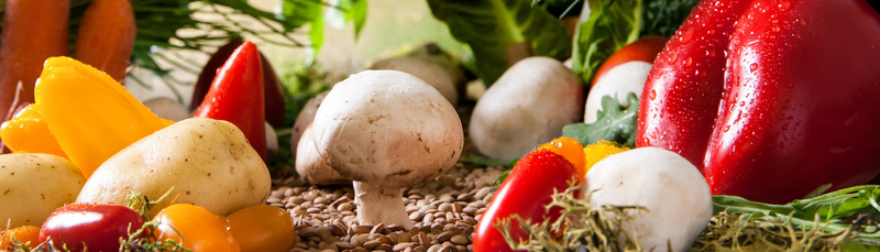 vegetables-landscape-2943500_800
